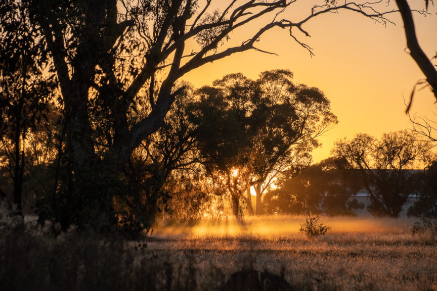 Bridgewater on Loddon Freecamp sunrise