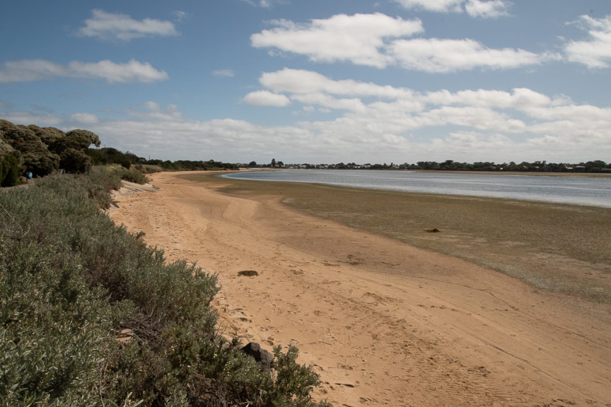 Low tide on Barwon River - next to our site